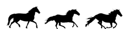 horsesbg